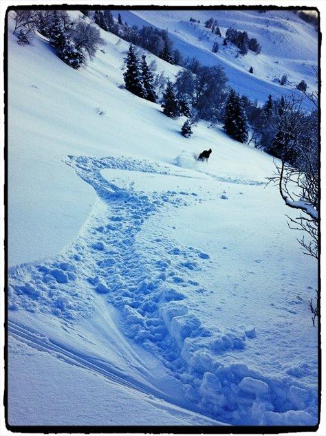 Ski Hors piste Saint Lary