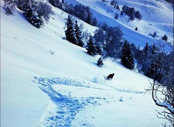 Station de ski de Saint Lary